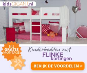 NL regulier GIF 300x250