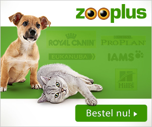 Netherlands Pet Supply Stores | ExpatINFO Holland