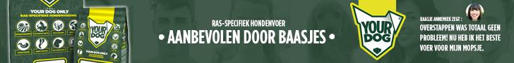 ZOEK.MENU De Nederlandstalige zoekmachine en webindex